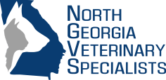 Image: North Georgia Veterinary Specialists