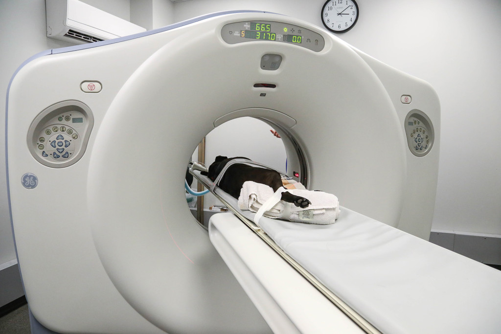 Global Remanufactured Medical Imaging Device Market 2020 SWOT Analysis – GE  Healthcare, Providian Medical, Hitachi, Siemens – Red & Black Student  Newspaper