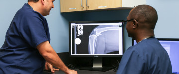 Image: Veterinary specialists reviewing radiographs
